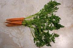 与附属的上面的新鲜的有机红萝卜 免版税库存图片