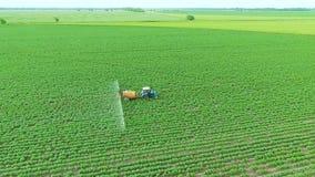 与除草药的喷洒的土豆领域 植物3的保护 股票视频