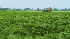 与除草药的喷洒的土豆领域 植物4的保护 股票录像