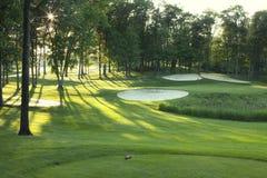 与陷井和被日光照射了结构树的高尔夫球绿色 免版税库存图片