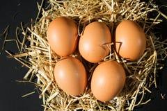 与雀斑的五个新鲜的未加工的鸡蛋在黑背景的干草 免版税库存图片