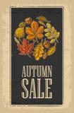 与集合叶子和橡子的海报AUTUNB销售 传染媒介葡萄酒被刻记的例证 皇族释放例证