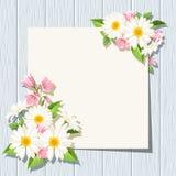 与雏菊和会开蓝色钟形花的草的卡片在蓝色木背景开花 向量EPS-10 库存例证