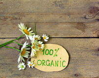 与雏菊的有机标签 库存照片