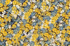 与雏菊的织品纹理 免版税库存照片