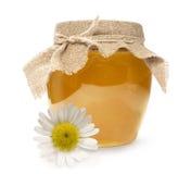 与雏菊的蜂蜜 库存照片