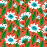与雏菊花的传染媒介无缝的花卉样式 免版税库存图片