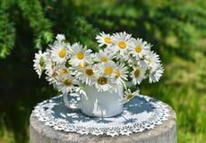与雏菊花的静物画在阳光下 免版税库存照片