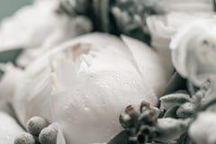 与雨下落的婚礼花束 早晨婚礼之日在夏天 美好的混合白色牡丹和玉树 免版税库存图片