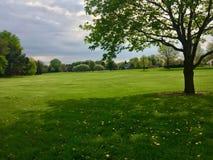 与雨云的一个美好的春天早晨 免版税图库摄影