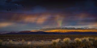 与雨和彩虹的风雨如磐的日落在有光的沙漠在山脉 免版税库存照片