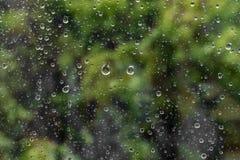 与雨珠的湿家庭窗口 在一个湿窗口后的树 雨珠哀伤的面带笑容  库存照片