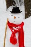 与雪人的冬天乐趣在帽子和红色围巾 库存照片