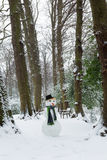 与雪人的冬日 免版税库存图片