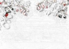 与雪分支的圣诞节装饰和在白色ba的一个红腹灰雀 免版税库存照片