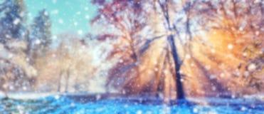与雪剥落的抽象迷离冬天背景 免版税库存图片