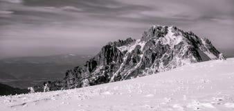 与雪和冰的美丽的落矶山脉 免版税库存图片
