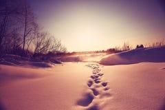 与雪和冰水的小河 免版税图库摄影