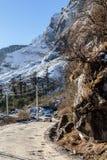与雪和叶子的山较少树 在与土路和四轮驱动的旅游汽车下在途中对零点 免版税库存照片