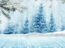 与雪和圣诞树的冬天风景 免版税库存照片