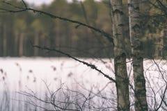 与雪和树干在寒冷-葡萄酒r的冬天农村场面 免版税库存图片