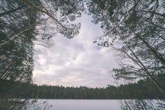 与雪和树干在寒冷-葡萄酒r的冬天农村场面 图库摄影