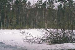 与雪和树干在寒冷-葡萄酒r的冬天农村场面 库存照片