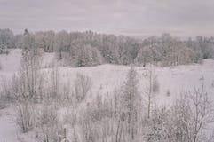 与雪和白色的冬天农村场面调遣葡萄酒作用 免版税图库摄影