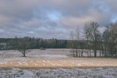 与雪和白色的冬天农村场面调遣葡萄酒作用 库存照片