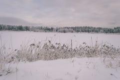 与雪和白色的冬天农村场面调遣葡萄酒作用 免版税库存照片