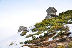与雪和绿草的山 库存图片