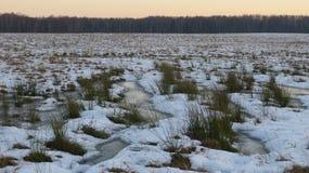 与雪和水坑的领域草 免版税库存图片
