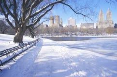 与雪在中央公园,曼哈顿,纽约,在冬天暴风雪以后的NY的公园长椅 免版税库存照片