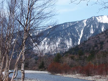 与雪山、树和河的美好的场面 免版税库存照片