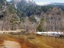 与雪山、树和河的美好的场面 免版税库存图片