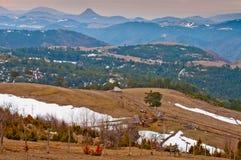 与雪片段的领域 库存图片