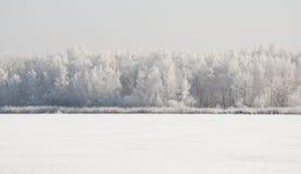 与雪的冬天横向 免版税库存照片