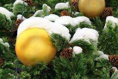 与雪的大黄色球在圣诞树 免版税库存图片