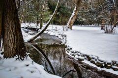 与雪的小森林地小河 库存图片