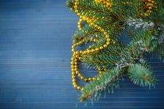 与雪的毛皮树分支 免版税库存照片