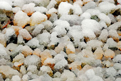 与雪的石渣覆盖物 库存照片