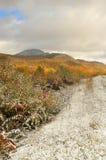与雪的秋天风景 免版税图库摄影