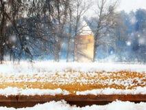 与雪的空的桌coverd在梦想和不可思议的冬天风景背景前面 对产品显示蒙太奇 库存图片