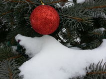 与雪的红色圣诞节装饰品 免版税图库摄影