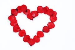与雪的红色玫瑰花瓣心脏在白色背景,华伦泰` s 免版税库存照片