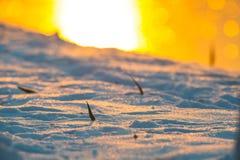 与雪细节的黄色日落 库存图片