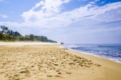 与雾和小人的Ostsee海滩在背景中 免版税图库摄影