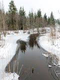 与雾和冻河的冬天农村场面 库存照片