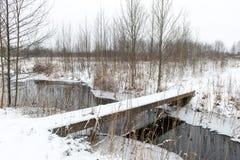 与雾和冻河的冬天农村场面 免版税库存图片