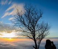 与雾海的庄严日出  图库摄影